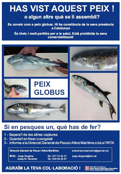 peixglobustoxic