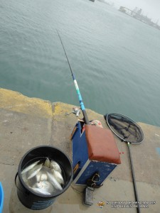societat-de-pescadors-esportius-de-mar-barcelona-1120(www.societatpescadorsbarcelona