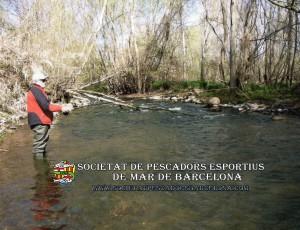 truita_3_el_pasteral(www.societatpescadorsbarcelona.com)
