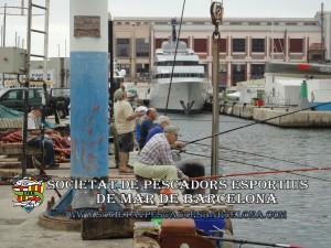 concurs_carme_port_de_Barcelona(www.societatpescadorsbarcelona.com)