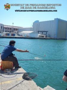 2n_concurs_mar-costa_05_06_2016_35_(www.societatpescadorsbarcelona.com)
