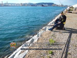 Aplec_pesca_moll_adossat_Barcelona_18_06_2016_30_(www.societatpescadorsbarcelona.com)