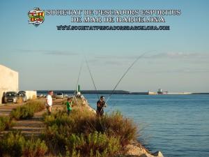 Aplec_pesca_moll_adossat_Barcelona_18_06_2016_36_(www.societatpescadorsbarcelona.com)
