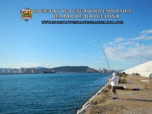 Aplec_pesca_moll_adossat_Barcelona_18_06_2016_37_(www.societatpescadorsbarcelona.com)