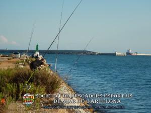 Aplec_pesca_moll_adossat_Barcelona_18_06_2016_38_(www.societatpescadorsbarcelona.com)