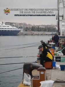 5e_concurs_mar-costa_23_10_2016_01_(www.societatpescadorsbarcelona.com)
