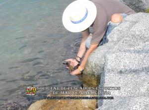 Enquesta sobre la pesca esportiva a Catalunya