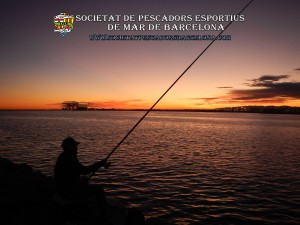 Aplec_pesca_Port_de_Barcelona_11_11_2017_01(www.societatpescadorsbarcelona.com)