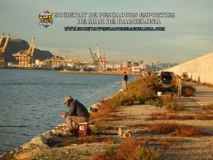 Aplec_pesca_Port_de_Barcelona_11_11_2017_08(www.societatpescadorsbarcelona.com)