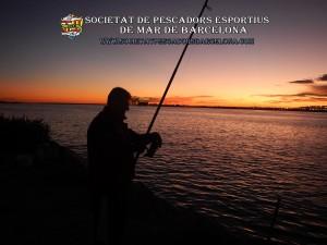 Aplec_pesca_Port_de_Barcelona_11_11_2017_15(www.societatpescadorsbarcelona.com)