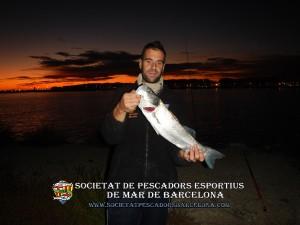 Aplec_pesca_Port_de_Barcelona_11_11_2017_18(www.societatpescadorsbarcelona.com)