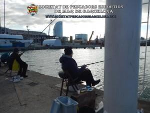Concurs_pavo_26-11-2017_03_(www.societatpescadorsbarcelona.com)