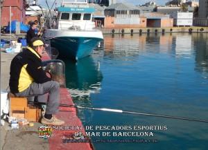 Concurs_pavo_26-11-2017_21_(www.societatpescadorsbarcelona.com)