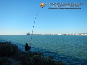 Aplec_pesca_Port_de_Barcelona_03_12_2017_06(www.societatpescadorsbarcelona.com)