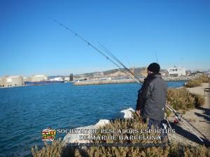 Aplec_pesca_Port_de_Barcelona_03_12_2017_12(www.societatpescadorsbarcelona.com)