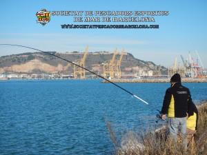 Aplec_pesca_Port_de_Barcelona_03_12_2017_33(www.societatpescadorsbarcelona.com)