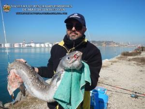 Aplec_Port_de_Barcelona_17-02-2019_01_(www.societatpescadorsbarcelona.com)