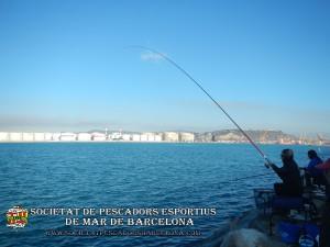 Aplec_Port_de_Barcelona_17-02-2019_08_(www.societatpescadorsbarcelona.com)