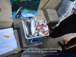 3r_concurs_embarcacio_fondejada_2019_29(www.societatpescadorsbarcelona.com)