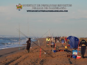 1r_concurs_mar_costa_2019_Prat_de_Llobregat_08(www.societatpescadorsbarcelona.com)